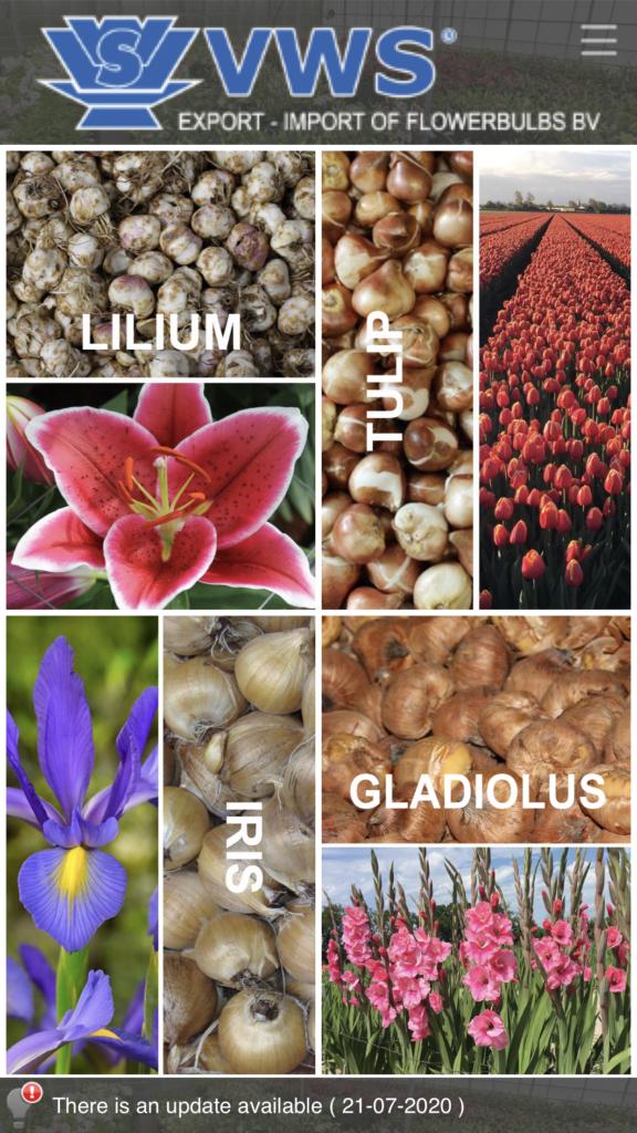 flowerbulbs app vws